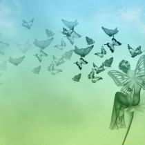 специалист по бабочкам